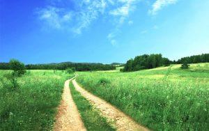 Route Gestalt therapie